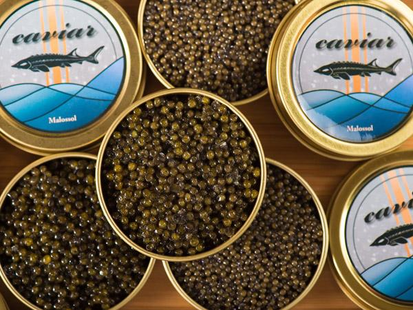 BELUGA頂級魚子醬-單罐裝(30g/罐)